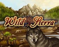 Wild Sierra